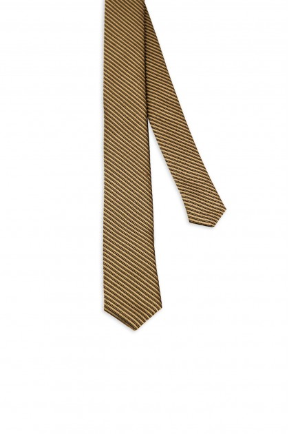 Diagonal Stripes Tie